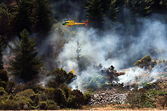 Blenheim-Fire services battle forest fire at Renwick