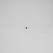 Trekking on the Foxfonna Glacier, Spitsbergen, Svalbard