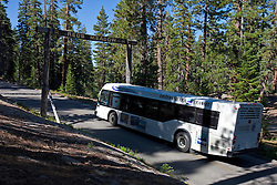A shuttle bus runs to Reds Meadow past Devils Postpile National Monument, California, United States of America