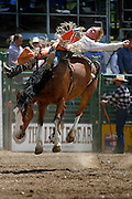 061811-Evergreen, COLORADO-evergreenrodeo-Bareback rider Tim Shirley, of Bailey, CO hangs on during the Evergreen Rodeo Saturday, June 18, 2011 at the El Pinal Rodeo Grounds..Photo By Matthew Jonas/Evergreen Newspapers/Photo Editor