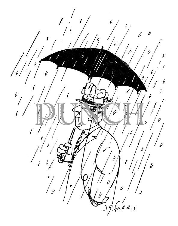 (A man carries his little dog on his head to keep it under his umbrella and out of the rain)