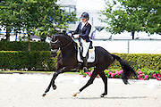 Vai Bruntink - Hennessy<br /> Longines FEI/WBFSH World Breeding Dressage Championships for Young Horses 2016<br /> © DigiShots