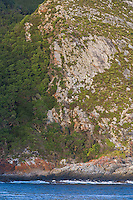 Coastal forest and coastal fynbos extend down to the shoreline at Tsitiskamma Marine Protected Area. Eastern Cape. South Africa