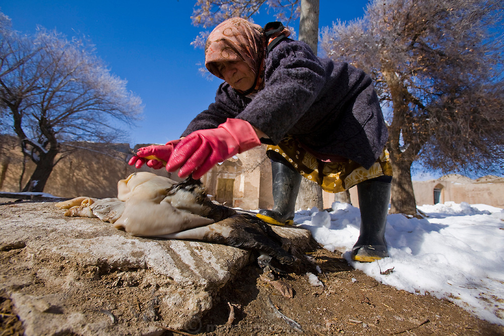 A woman scrapes a sheep's skin of its hair in the snow in Ghayoumabad village, near the highway between Yazd and Esfahan in the foothills of the Zagros Mountains of central Iran. She will use the sheep skin to make a bag to hold traditional yogurt.  MODEL RELEASED.
