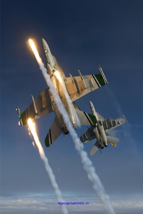 F/A-18C&EHornets