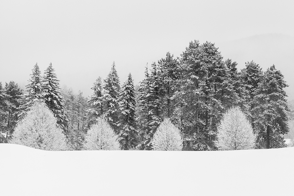 A winter landscape in New England