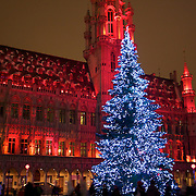 The Christmas tree in the center of the Grand Place, as the Town Hall is painted red with light for the show of the season