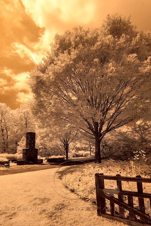 Infrared photo of Asheville Arboretum, North Carolina