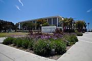 Belmont Plaza Olympic Pool