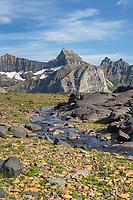 Thunderbird Mountain from Boulder Pass. Glacier National Park Montana