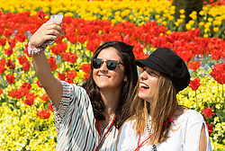 © Licensed to London News Pictures. 21/04/2018. London, UK. Tourists take photos in the summer sunshine, as the UK basks in warm weather. Temperatures reached as high as 26 degrees in the South East today. Photo credit : Tom Nicholson/LNP