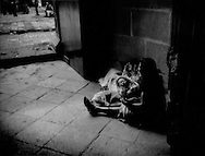 Indigenous woman cradles her newborn in the entrance to the main cathedral in Oaxaca, Mexico.