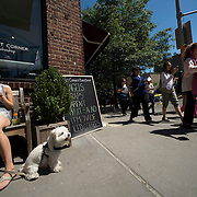 """June 21, 2014 - New York, NY : <br /> The city was flooded with music on Saturday as Make Music New York brought more than 1,300 free concerts to the city's streets and parks. The annual festival's program included """"And Death Shall Have No Dominion,"""" a piece by composer Pete M. Wyer, honoring the centenary of the birth of the poet Dylan Thomas. The piece -- a participatory singing event -- was performed by a synchronized headphone choir. The choir's singers began in smaller groups around lower Manhattan and culminated in a meeting in Battery Park City. The sopranos, who began their walk at Bleecker Playground in Greenwich Village, sing their way down Hudson Street, to the meeting point in Nelson A. Rockefeller Park. CREDIT: Karsten Moran for The New York Times"""