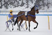 Trotting at White Turf 2011 horse  racing event in St Moritz, Switzerland.