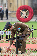 An officer clears leaves from his regimental area - The Duke of Edinburgh, Life Member, Royal British Legion, accompanied by Prince Harry, visit the Field of Remembrance at Westminster Abbey  - 10 November 2016, London.