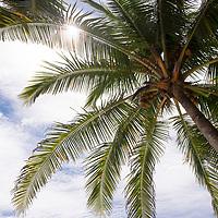 Scene on Playa Hermosa near the Banana Beach lounge in Santa Teresa, Costa Rica.
