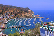 Scenic View of Avalon Harbor at Catalina Island