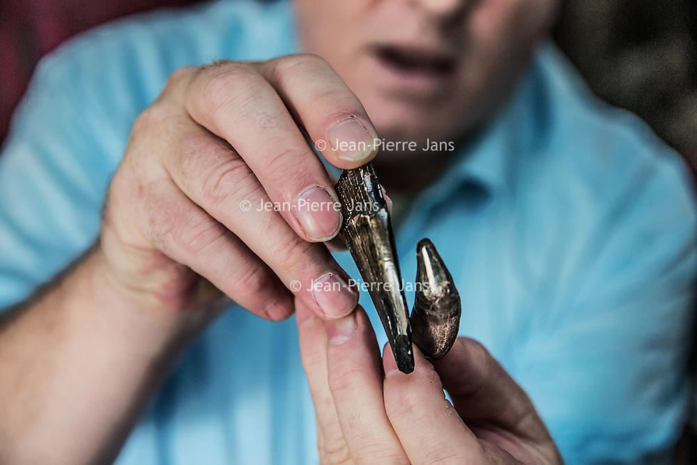Nederland, Hoofddorp, 21 september 2016.<br /> Dick Mol, de sabeltandkattenexpert toont zijn liefde voor uitgestorven diersoorten zoals de mammoet en de sabeltandkat.Ook heeft hij fossiele hoektanden van deze kat in zijn verzameling. <br /> <br /> Netherlands, Hoofddorp, September 21, 2016.<br /> Dick Mol, the machairodontinae expert shows his love for extinct animals such as the mammoth and the saber-toothed cat. He also has fang fossil of this cat in his collection.<br /> <br /> Foto: Jean-Pierre Jans