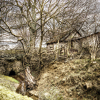 English country scene with bare winter trees and wooden shack