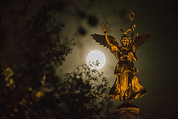 November 14, 2016 - Berlin, Germany - The Victory Column (Siegessaeule) is pictured as the so called 'super moon' raises in Berlin, Germany on November 14, 2016. The moon was in its orbit at closest point to Earth after 70 years. (Credit Image: © Emmanuele Contini/NurPhoto via ZUMA Press)