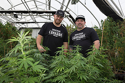 EXCLUSIVE: Meghan Markle's nephew Tyler Dooley is a Cannabis farmer who is planning a new drug called Markle's Sparkle. 25 year old Tyler is too busy growing Millions of Dollars worth of the sticky icky at his greenhouse in Oregon to worry about the upcoming big day. 16 Apr 2018 Pictured: Tyler Dooley and Fred Tamayo. Photo credit: MEGA TheMegaAgency.com +1 888 505 6342