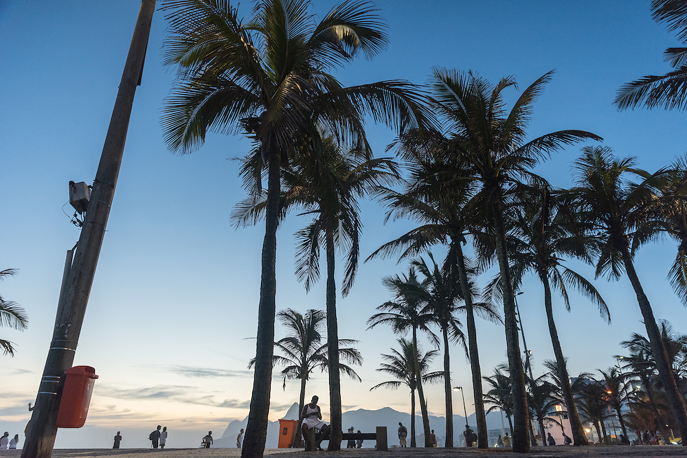 Palmtrees on the boulevard of Ipanema beach at sunset, Rio de Janeiro, Brazil.