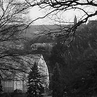 Krohn Conservatory and Mount Adams