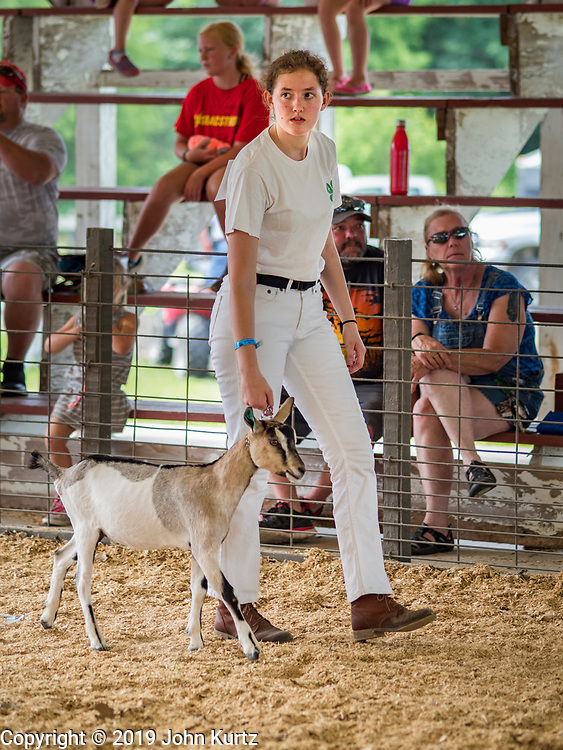 27 JUNE 2019 - CENTRAL CITY, IOWA: CAITLYN ROBERTSON shows her Alpine Goat during the Dairy Goat show at the Linn County Fair. Summer is county fair season in Iowa. Most of Iowa's 99 counties host their county fairs before the Iowa State Fair, August 8-18 this year. The Linn County Fair runs June 26 - 30. The first county fair in Linn County was in 1855. The fair provides opportunities for 4-H members, FFA members and the youth of Linn County to showcase their accomplishments and talents and provide activities, entertainment and learning opportunities to the diverse citizens of Linn County and guests.        PHOTO BY JACK KURTZ