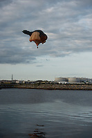 15/07/2015 repro free. The Galway International Arts Festival launched Patricia Piccinini's SKYWHALE over Galway City and County and will continue for the rest of the week weather permitting  as the Galway International Arts Festival runs from July 13-26.  <br /> Photo:Andrew Downes:XPOSURE  <br /> Patricia is one of Australia's most acclaimed artists.