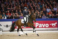Bruntink Vai (NED) - Foreign Affair<br /> KWPN Stallion Selection - 's Hertogenbosch 2014<br /> © Dirk Caremans