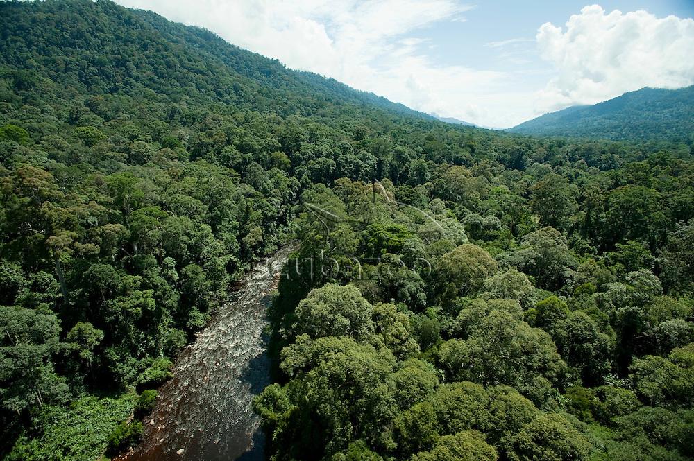Maliau River running through dense forest, Maliau Basin, Sabah, Borneo, East Malaysia.