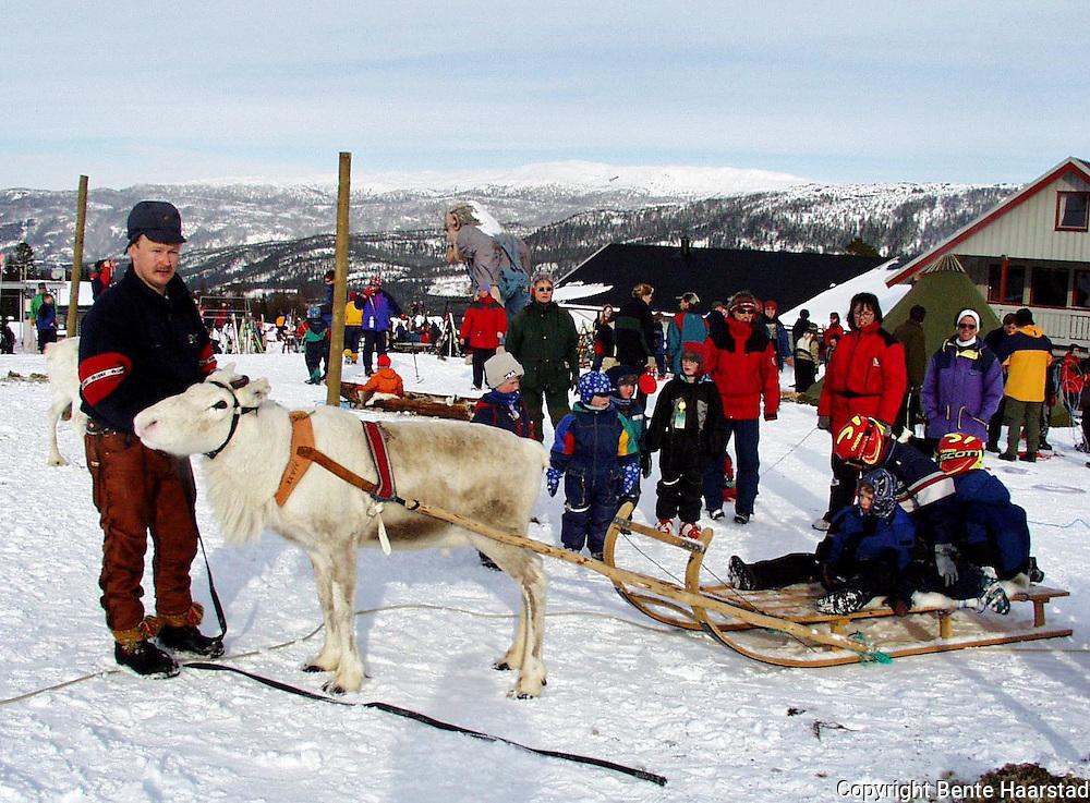 Sørsamisk område strekker seg fra Saltfjellet i nord til Elgå i Hedmark i sør. Omfatter noen få tusen på norsk og svensk sida av grensa. The sourth sami people consists of a couple of tousand people.