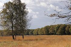 De Zuid, GNR, Hilversum Netherlands