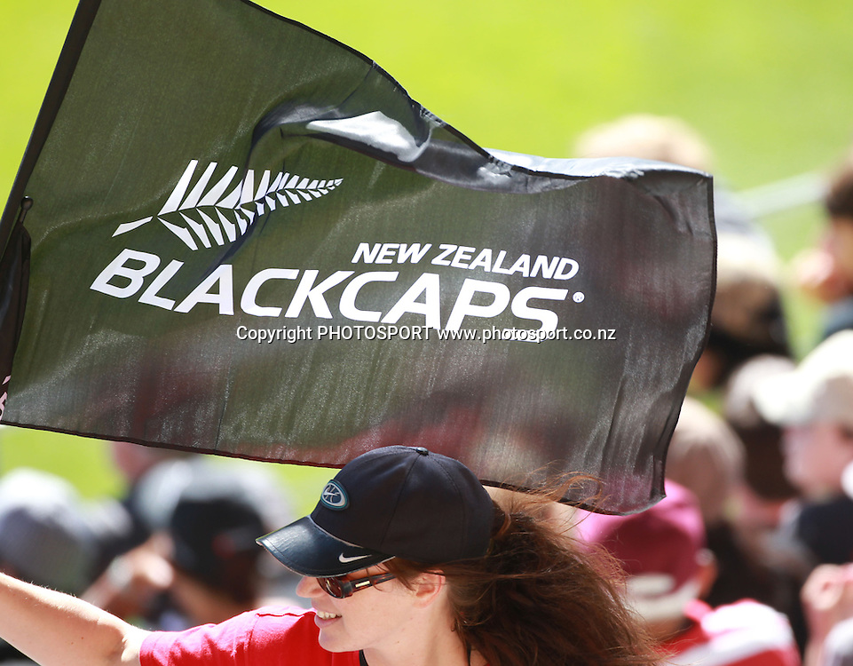 A fan waves a flag during the 3rd ODI, Black Caps v Pakistan, One Day International Cricket. AMI Stadium, Christchurch, New Zealand. Saturday 29  January 2011. Photo: Andrew Cornaga/photosport.co.nz