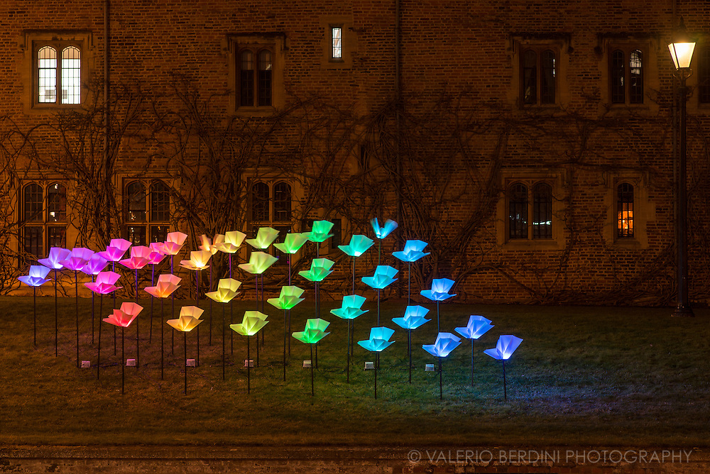 Light installation at Magdalene College, Cambridge. e-Luminate Cambridge is a contemporary arts festival at the forefront of scientific and technological research. A unique opportunity to discover the richness and diversity of Cambridge's iconic buildings and public spaces in a new light. e-Luminate Cambridge has been at the forefront of this vibrant and expanding area of artistic practice, called Light Art, promoting innovation through its support of some of the most exciting figures on the contemporary scene.