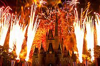 Wishes fireworks show (with Cinderella Castle behind), Magic Kingdom, Walt Disney World, Orlando, Florida USA