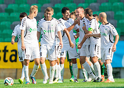 Players of Krka celebrate during football match between NK Olimpija and NK Krka in Round 1 of Prva liga Telekom Slovenije 2014/15, on July 19, 2014 in SRC Stozice, Ljubljana, Slovenia. Photo by Vid Ponikvar / Sportida.com