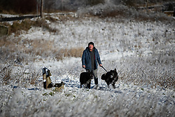 © Licensed to London News Pictures . 23/01/2019. Bolton , UK . A man walks his dogs through snow in Horrocks Wood . Clear skies and snow shrouds the hills in the North West as fog descends over Manchester City Centre . Photo credit : Joel Goodman/LNP