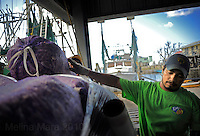 "LEEVILLE, LA- June 23:  Bags of shrimp are hoisted off a vietnamese shrimp boat onto a quiet dock by the St. Vincent Seafood down on the bayou... the Trans, a Vietnamese fishing family, struggle to keep their fishing company a float in Leeviller, Louisiana, Wednesday, June 23, 2010. The rare catch of shrimp is barely keeping the small company going.  ""We may have to shut down soon,"" said co owner, Ngoc Nguyen. (Melina Mara/The Washington Post)"
