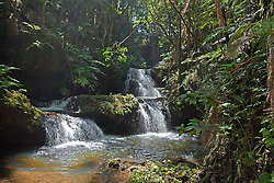 Onomea waterfall adds a touch of lushness and cooling to a walk through Hawaiian Tropical Botanical Garden, on scenic loop of Highway 19, north of Hilo, and on Onomea Bay.