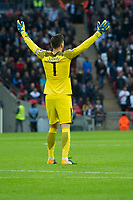 Football - 2017 / 2018 Premier League - Tottenham Hotspur vs. Swansea City<br /> <br /> rear view of Hugo Lloris of Spurs with hands in air number 1 visible —<br /> , at Wembley.<br /> <br /> COLORSPORT/WINSTON BYNORTH