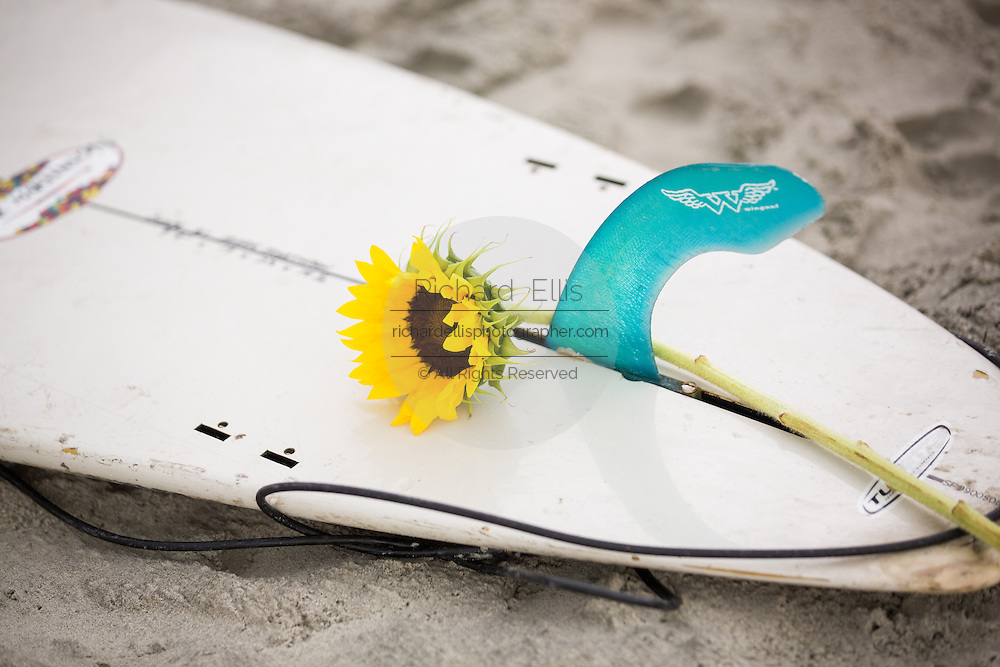 A flower sits on a surfboard as Charleston area surfers gather for a traditional memorial paddle out to honor and remember the nine people killed at the historic mother Emanuel African Methodist Episcopal Church June 27, 2015 in Folly Beach, South Carolina. Earlier in the week a white supremacist gunman killed 9 members at the historically black church.