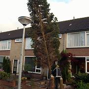 Brandweer Huizen haalt bomen weg,