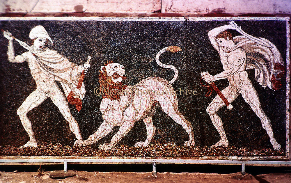 The Lion Hunt':  Alexander the Great and Hephestion (Hephaestion)? hunting lion.  Mosaic from the royal palace at Pella  4th century BC.