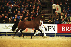 Emilion<br />