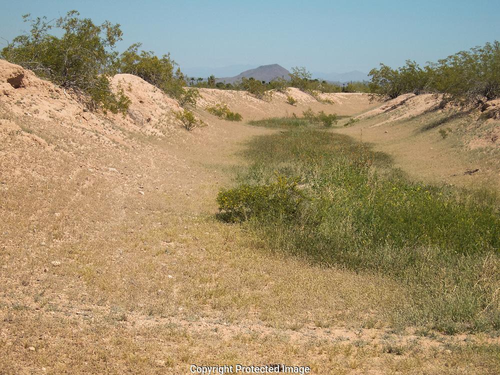 Park of Canals, Mesa, AZ