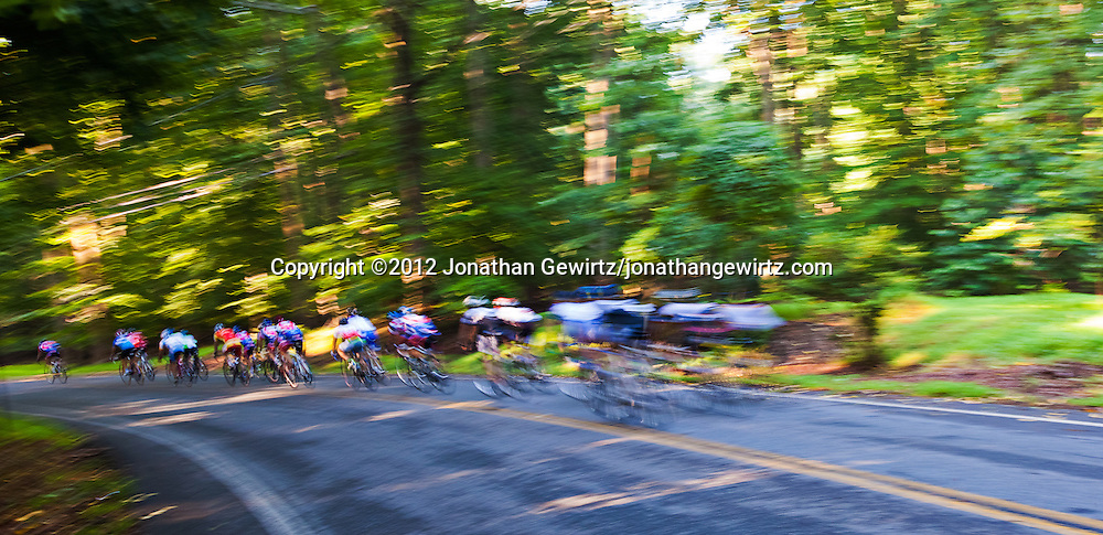 A group of recreational bicyclists passes the camera in a blur on its way down a hill in a wooded area. WATERMARKS WILL NOT APPEAR ON PRINTS OR LICENSED IMAGES.