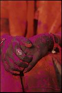"""LE FETE DE HOLI A MATHURA, UTTAR PRADESH, INDE // Lors de la fete de holi, """"fete des couleurs"""" qui celebre les amours de Krishna et Radha, les indiens se jettent de la poudre les uns sur les autres  Holi festival takes place every year in India, here in Mathura, Uttar Pradesh. People throw colored powders."""