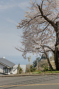 Odawara, Kanagawa Prefecture, Japan, March 27 2018 - Surrounding area of Enoura Observatory, founded by Japanese artist Hiroshi SUGIMOTO and that opened in October 2017.