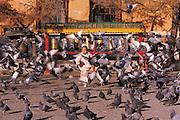 Child running & pigeons<br /> Gandantegchinlen Monastery<br /> Ulaanbaatar<br /> Mongolia